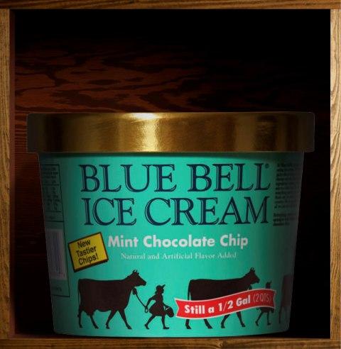 Blue Bell Ice Cream Mint Chocolate Chip